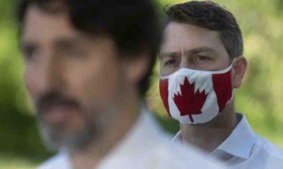 Kanadalı siyasetçi uzaktan gerçekleştirilen görüntülü meclis oturumunda idrarını yaptığı için özür diledi