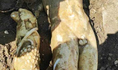 Kanalizasyon kazısında 'Apollon' olduğu düşünülen heykel bulundu