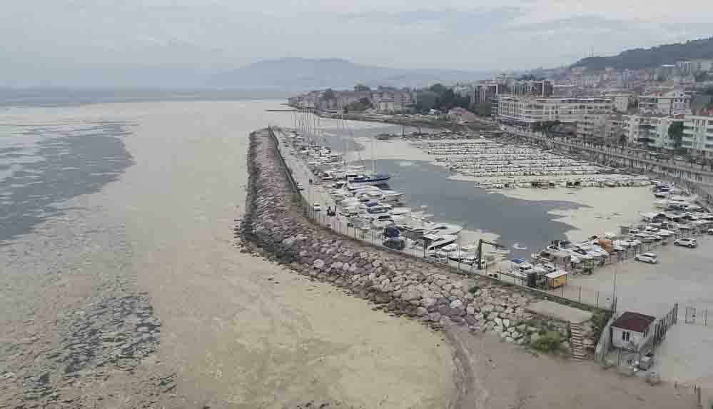 """Korkutan görüntüler Marmara Denizi'nden: """"Deniz yüzümüze tükürüyor!"""""""