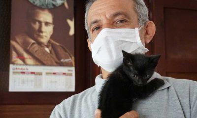 Mahsur kaldığı sarnıçtan kurtarılan kedi yavrusunu belediye personeli sahiplendi