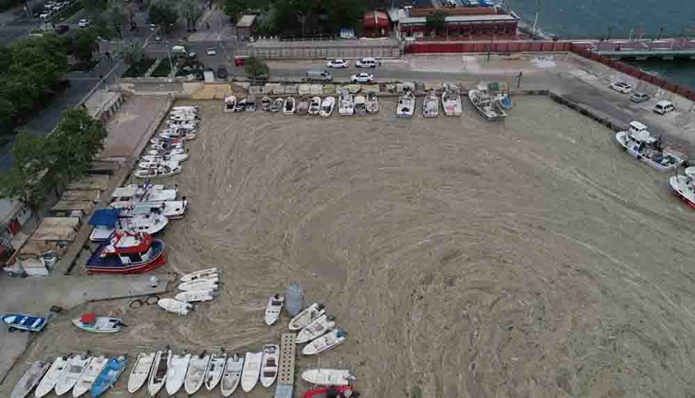 Marmara'daki deniz salyası krizi, ABD basınının gündeminde: Marmara ölüyor
