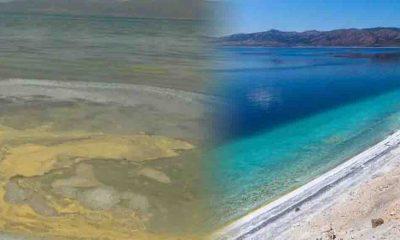 Salda Gölü'nün Millet Bahçesi yapılan kısmında korkutan görüntü: Kumun rengi değişti!