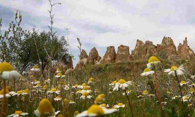 Türkiye'nin ikinci jeoparkı Kapadokya'da oluşturulacak