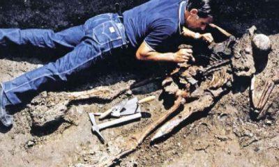 Vezüv Yanardağı patlaması: '26 numaralı iskeletin' gizemi çözülmüş olabilir