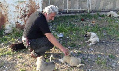 Afyonkarahisar'da 'can dostları'nı günde iki kez besleyen esnaf, çevresindekilere örnek oluyor