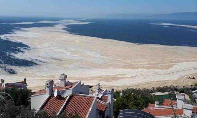 Bakanlıktan 'müsilaj' genelgesi: Türkiye'nin en büyük deniz temizliği seferberliği başlatılacak