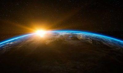 Bilim insanları Dünya tarihindeki en büyük yok oluşun gizemini çözdü