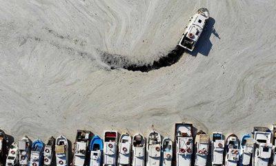 Çevre ve Şehircilik Bakanı Kurum: Marmara Denizi'nden 5 günde 1700 metreküp müsilaj temizlendi