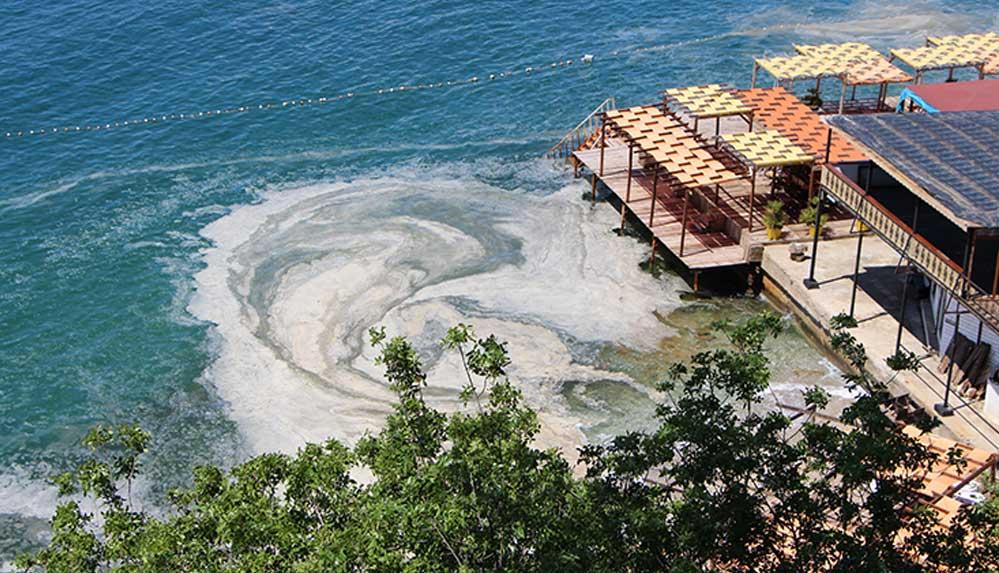 Erdek ve Bandırma körfezlerinin dibinde deniz salyası tehlikesi