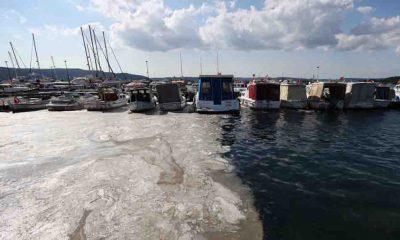 İTÜ'den Marmara'yı kurtarmak için müsilaja 10 öneri
