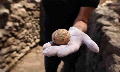 İnsan dışkısıyla korunmuş bin yıllık tavuk yumurtası bulundu