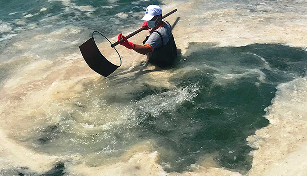 Müsilaj kabusu büyüyor: Lapseki'de denize girmek yasaklandı