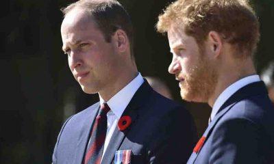 Prens Harry'den sonra Prens William da kitap yazıyor