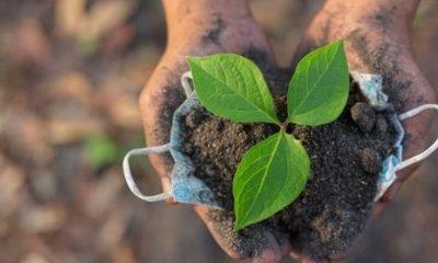 TTB: Doğa ve insan yaşamı bir avuç şirketin sömürüsüne kesinlikle terk edilmemeli