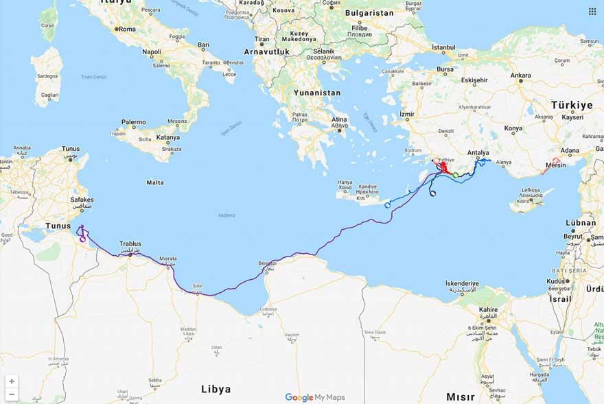 Uydudan izlenen caretta caretta 296 günde Antalya'dan Tunus'a ulaştı