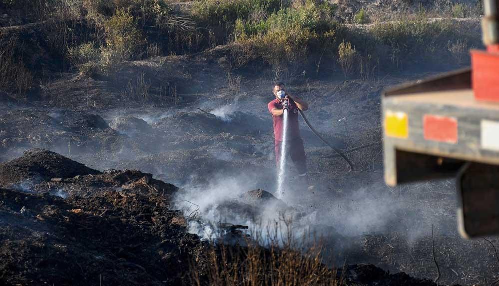 Adana'daki orman yangınında 2 sansar yavrusu orman işçileri tarafından kurtarıldı