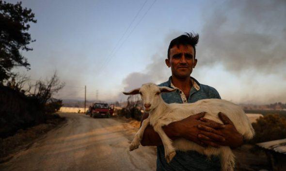 Bakan Bekir Pakdemirli: Manavgat yangınında Kızılay'ın, AFAD'ın yardımını bekleyen vatandaş yok