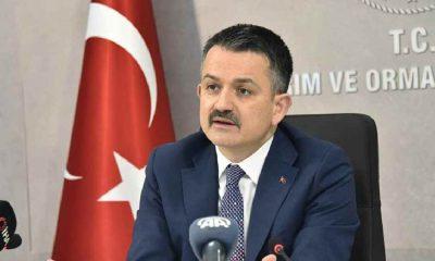 """Bakan Pakdemirli'den """"Manavgat"""" açıklaması"""