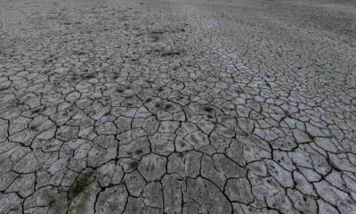 Dünyada 'iklim afetleri' kaynaklı ölümlerin yüzde 99'una sıcak hava neden olabilir