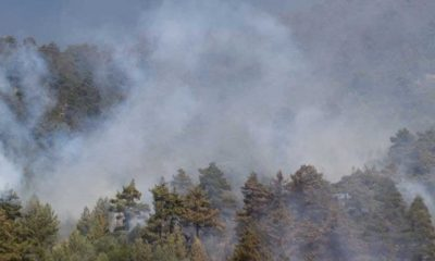 İtalya'nın Sardinya Adası'nda yangın nedeniyle 1500'den fazla kişi tahliye edildi