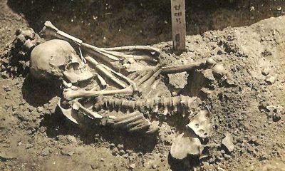Japonya'da bulunan 3000 yıllık iskelet, bilinen en eski köpek balığı kurbanı olarak kayda geçti