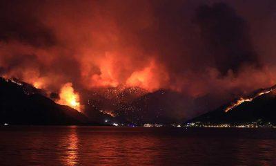 Son Dakika... Orman yangılarında can kaybı 9'a çıktı