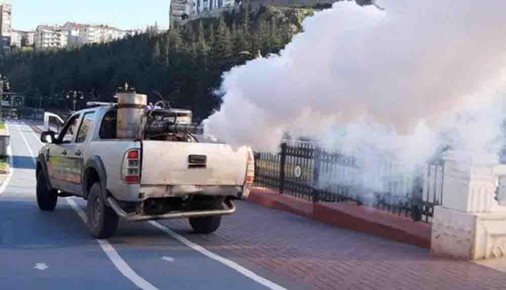 Sivrisinekler, İstanbul'un farklı ilçelerinde de görülmeye başladı