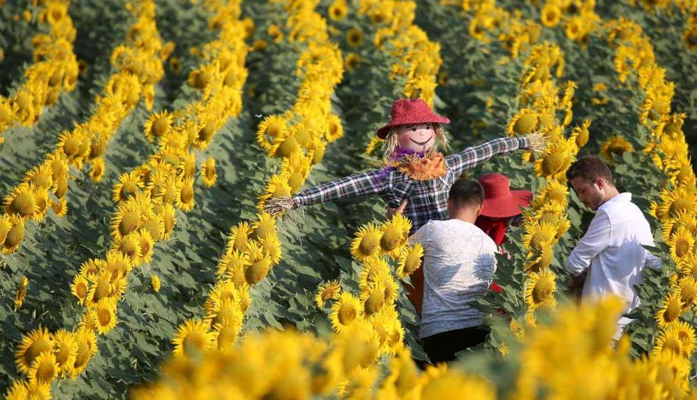 Tarımsal ürünleri köylerini tanıtmak için kullanan Kuştepeliler korkuluk festivaline hazırlanıyor