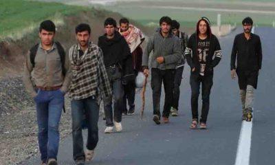 İYİ Partili Türkkan sordu: Afgan sığınmacılara Türk vatandaşlığı mı verilecek?