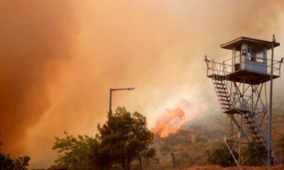 Alevler Milas'taki termik santrale ulaşırsa ne olur? Yangın termik santralde patlamaya neden olur mu?