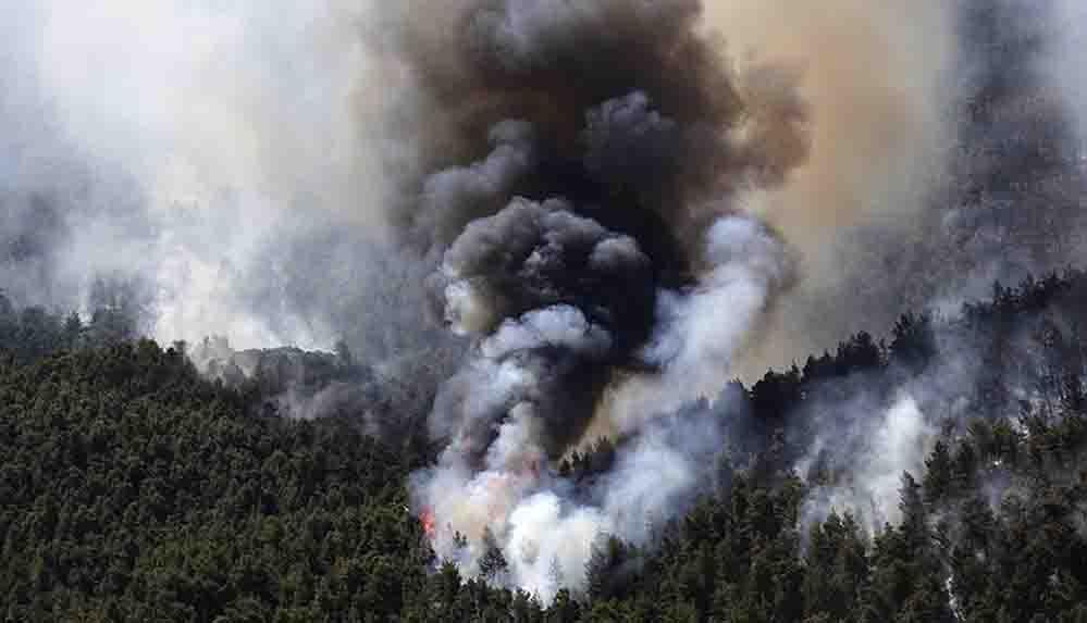 Atina yakınlarında devam eden orman yangınlarında 80-90 bin dönüm arazi kül oldu