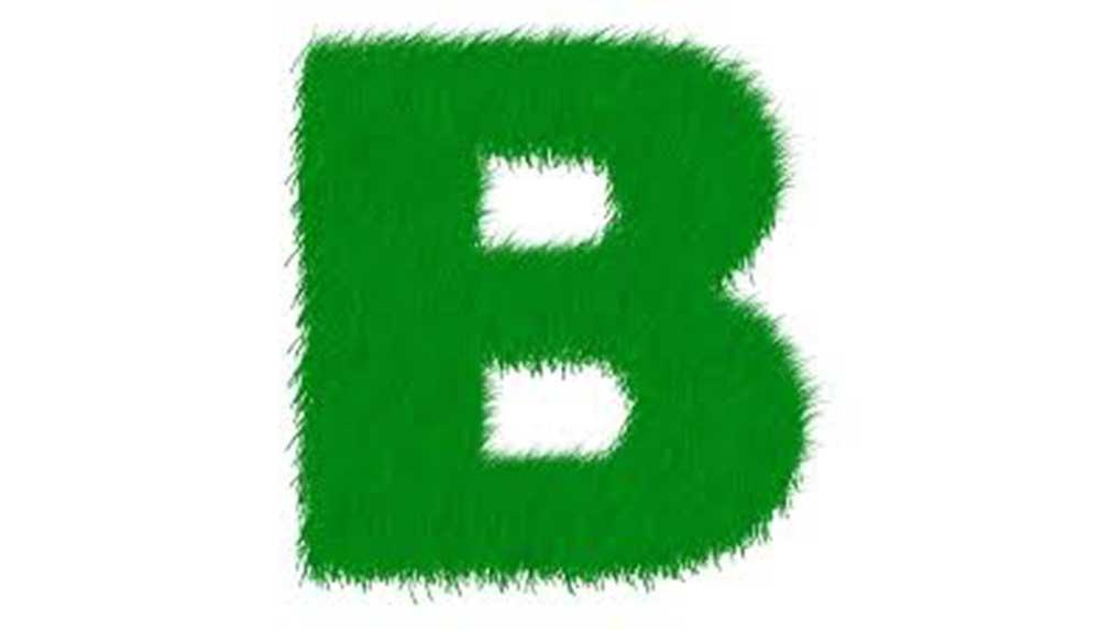 B harfi ile başlayan bitkiler