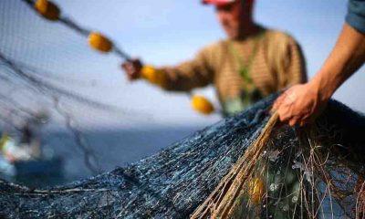 Balıkçılıkta av sezonu başlıyor