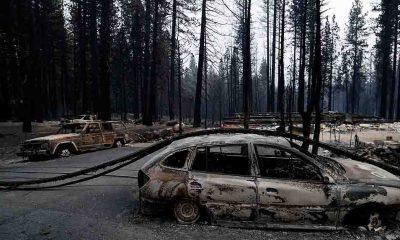 California'daki yangınlar için 'büyük afet' ilanı talep edildi