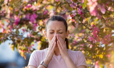 Alerjisi olanlar dikkat! Bu 8 kuralı asla unutmayın