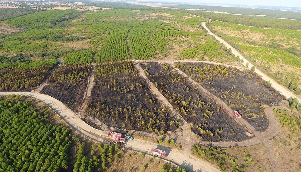 Edirne'de yanan ATV orman yangınına neden oldu