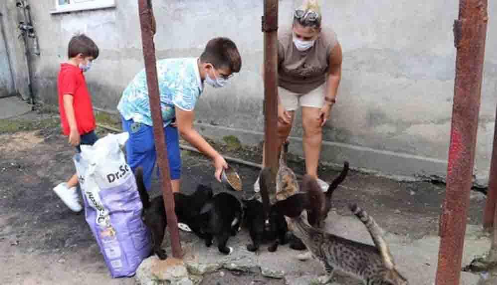 Harçlıklarını biriktirerek sokak hayvanlarına destek oluyor