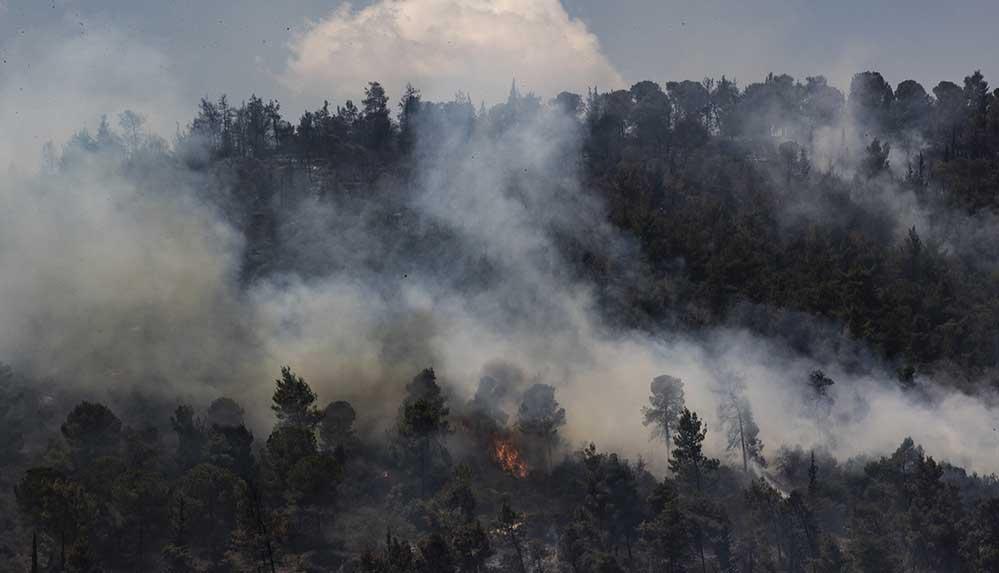 İsrail, Batı Kudüs'teki ormanlık alanda çıkan yangınlar nedeniyle uluslararası yardım istedi