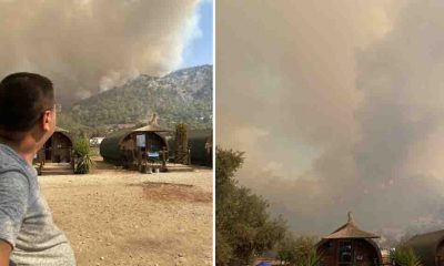 """Milas Belediye Başkanı Tokat: """"Yangın kritik eşiği aştı, sinirimden ağlayacağım…"""""""