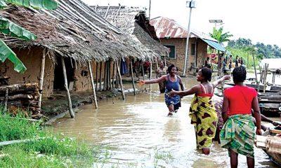Nijerya'da aşırı yağışlar sonucu 454 ev yıkıldı