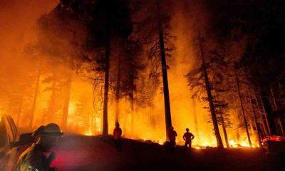 """Son Dakika... Bakan Pakdemirli yangına ilişkin son durumu açıkladı: """"Gündoğmuş'un tahliye edilmesi söz konusu"""""""