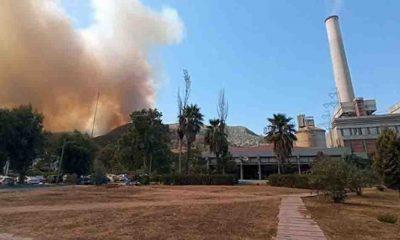 Son Dakika... Milas Belediye Başkanı'ndan çağrı: Alevler termik santrale yaklaştı