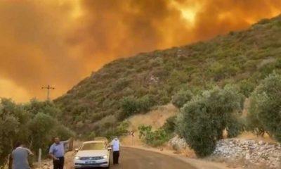 Milas Belediye Başkanı: Termik santralle ateş yüz yüze geldi