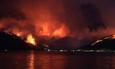 Sabah yazarı Tezel: Türkiye uçaksız bile yangın söndürmede lider ülke