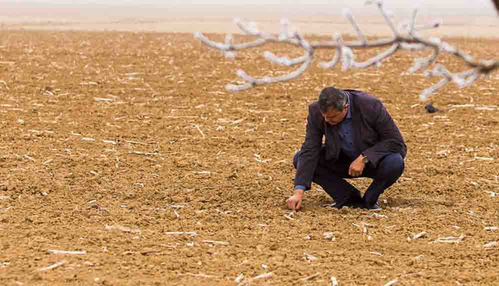Türkiye Ziraat Odaları Birliği Genel Başkanı Bayraktar: Kuraklıktan zarar gören il sayısı 52'ye çıktı