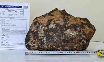 Van'da bulunan göktaşı 'Doğuzağaç' adıyla Uluslararası Meteorit Veri Bülteni'ne işlendi