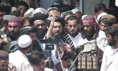 Taliban, Afganistan'da ağaç kesmeyi yasakladı