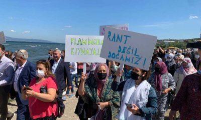 Bandırma'da kuşların yaşam alanına iki tesis kurulmasına yurttaşlardan tepki̇: Asla kabul etmiyoruz