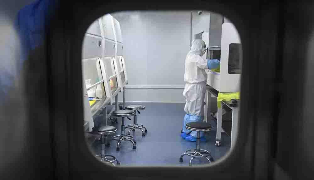 'Çinli araştırmacılar koronavirüsü yarasalara salıvermek için hibe teklifinde bulunmuş'