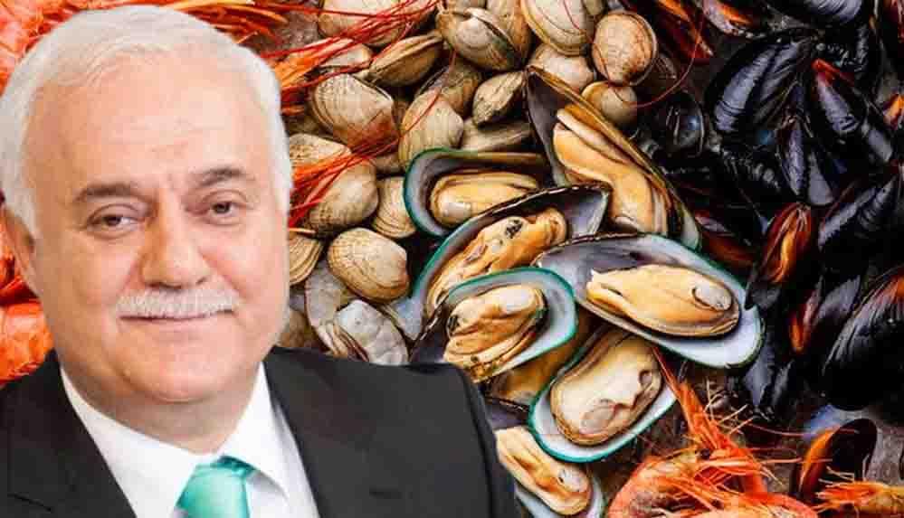 Diyanet 'haram' demişti; Nihat Hatipoğlu'ndan deniz ürünleri açıklaması: Deniz ürünlerine haram demek sakıncalı